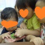 子どもたちが育てた枝豆!