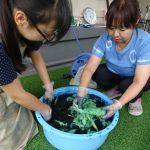 藍染め(造形教室)