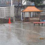 12月2日 雨降りだね!